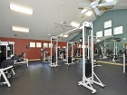 Campus Club Apartments Fitness Center 2
