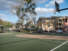 Campus Club Apartments Basketball court