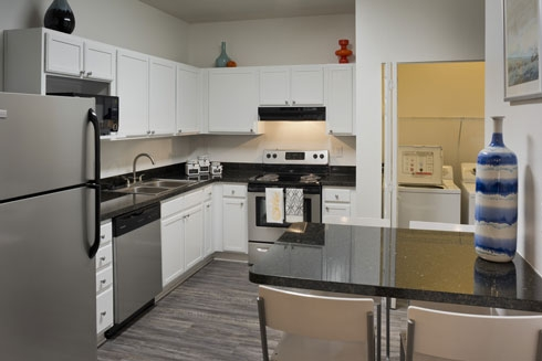 Gainesville Place Apartments Kitchen and Laundry