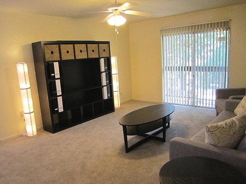 Pinetree Gardens and Colonial Oaks Apartments Living Area 1
