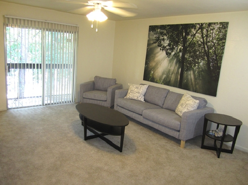 Pinetree Gardens and Colonial Oaks Apartments Living Area 3
