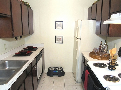 Spanish Trace Apartments Kitchen