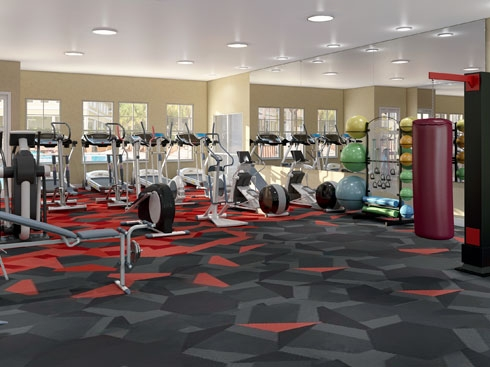 The Enclave Apartments Exercise / Fitness
