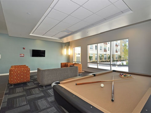 The Continuum  Leisure Lounge with Billilards Table