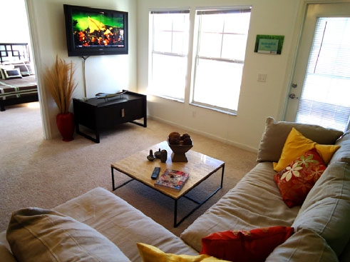 The Enclave Apartments Living Area 1