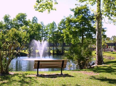 Towne Parc  Community Lake
